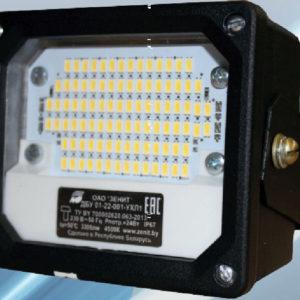 Светильник светодиодный ДБУ 01-22-001